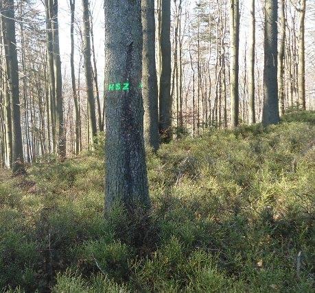 Znak na Błatniej_2